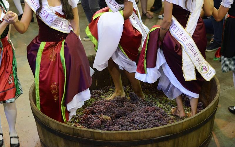 Conheça a historia da Festa da Uva de Jundiaí!