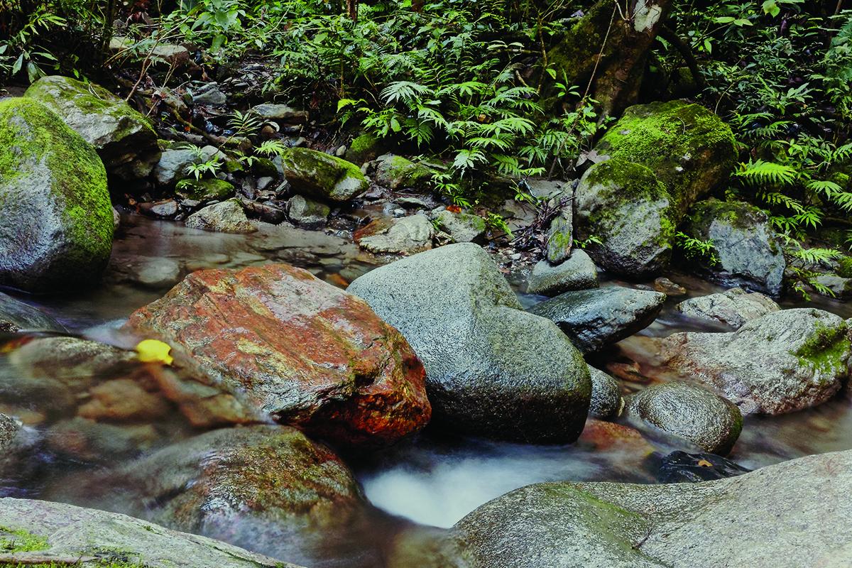 Cachoeira Rancho Alegre - Socorro